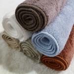 Luxury of Reya Plush Micro Fiber Hand Towels